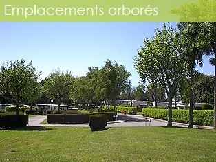 Camping emplacements ombragés